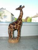 Klasse 4b Giraffen