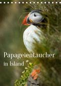 Kalender Papageientaucher