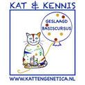Cursus kattengenetica
