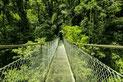 Canopy & Puentes Colgantes en Arenal