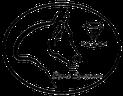 Bijoux Equestrian Pferd Diamant Kristall Reitsport Reitsportzubehör Stirnriemen