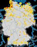 Karte zu den Brutvorkommen der Lachmöwe (Chroicocephalus ridibundus) in Deutschland.