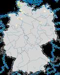 Karte zur Verbreitung des Kampfläufers (Philomachus pugnax) in Deutschland während der  Brutzeit.