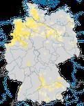 Karte zum Brutvorkommen des Brachvogels (Numenius arquata) in Deutschland.
