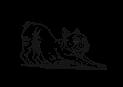 岐阜,関市,ストレッチ,膝痛,筋肉,マッサージ,ほぐす,伸ばす,パーソナルストレッチ,首こり,肩コリ,腰痛,スポーツ,柔軟性,声,歌,喉