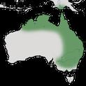 Karte zur Verbreitung des Glattstirn-Lederkopfs in Australien und Neuguinea.