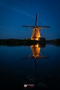 https://www.werkaandemuur.nl/nl/shopwerk/illuminated/684867/132?mediumId=1
