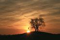 Wanddeko bestellen, wanddeko, Wandbild, Foto Sonnenuntergang, Foto, Baisingen, Keltischer Grabhügel