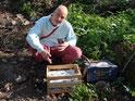 200 Blaubeersträucher / 200 plantas de blueberry