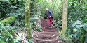 Von Hand gebaute Wege mit Treppen wow!