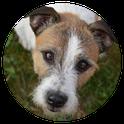 ZOTTELKOPP Hundepflege Salon