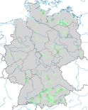 Karte zu den Brutgebieten der Kolbenente (Netta rufina) in Deutschland