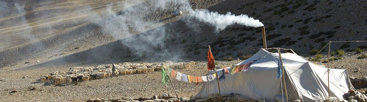 Trekking-Reise von Markha nach Kharnak in Ladakh