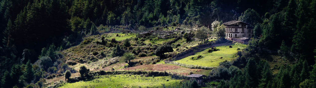 Klosterfesten in Thimphu und Gangtey während der Kultur-Reise Magisches Bhutan