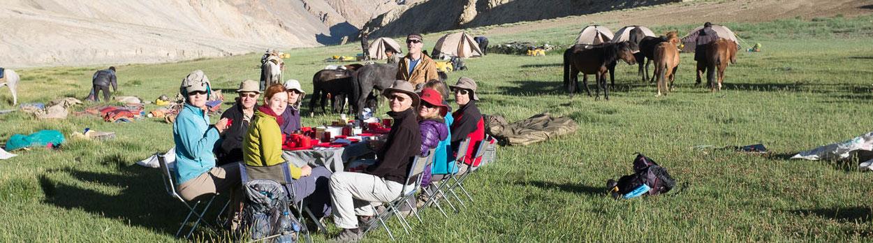 Gruppen- oder Privatreise im Himalaya, hier eine Trekkingruppe in Ladakh