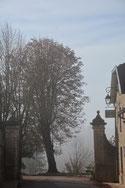 Zukunft im Nebel?