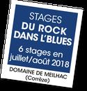 Souvenirs stages Du Rock Dans l'Blues
