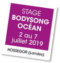 Stage Bodysong, Bodypercu
