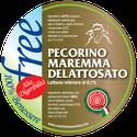 maremma formaggio caseificio toscano spadi follonica etichetta italiano origine latte delattosato italia pecora pecorino fresco