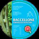 maremma pecora formaggio pecorino caseificio toscano toscana spadi follonica etichetta italiano origine latte italia fresco leggero baccellone