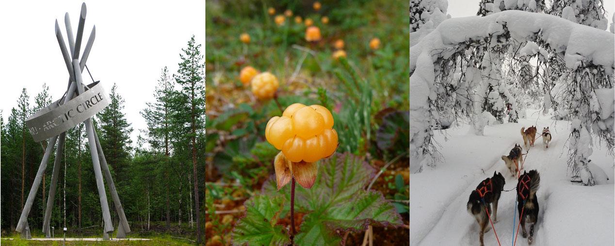finnisch online lernen, finnisch-lehrbücher, unterrichtsmaterial finnisch