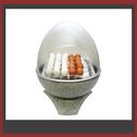 wie koch man perfekte Eier