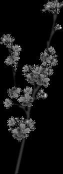 Tube Bloemen