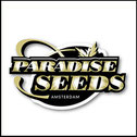 paradise seeds - semi da collezione