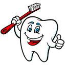Nur ein gesunder Zahn ist ein glücklicher Zahn