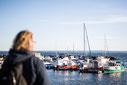 Photo homme regardant marina bateaux voiliers à Carleton-sur-Mer dans la Baie des chaleurs en Gaspésie Québec Canada en été par Marie Deschene photographe Pakolla