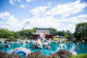 Photo of the Japanese garden at the Botanical Garden for Tourisme Montréal by Marie Deschene