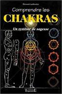 Comprendre les chakras, Pierres de Lumière, tarots, lithothérpie, bien-être, ésotérisme