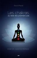 Les chakras au-delà des premiers pas, Pierres de Lumière, tarots, lithothérpie, bien-être, ésotérisme