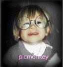 picmonkey : collage, effecten