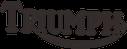Qualifizierter Service, Umbauten, Tuning und Zubehör für TRIUMPH Motorräder