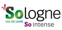 A visiter aux alentours des gîtes de charme de La Nigaudière en Sologne : l'Office de Tourisme de Romorantin, capitale de la Sologne