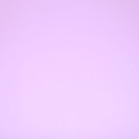 Sifonki Lilac
