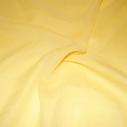 Sifonki Keltainen Primula