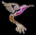 Le colibri du jardin permaculture à Curgy
