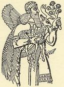 Illustrazione che ritrae Nimrod