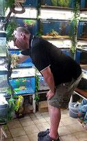 Aqua-Tropica Aquarienpflege