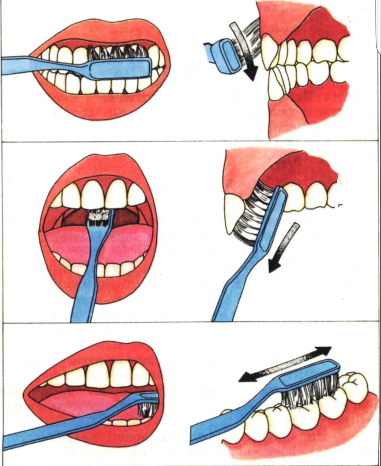 Картинка появление зубов у младенцев взяла