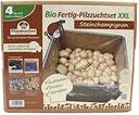 XXL Bio Steinchampignon 10 kg große Kultur, komplettes Pilzzuchtset für die eigene Pilzzucht