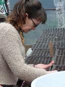 Tracy seeding