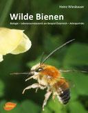 Heinz Wiesbauer: Wilde Bienen (1. Auflage)