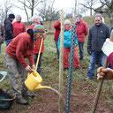 Baum- und Heckenpflanzaktion Dezember 2016
