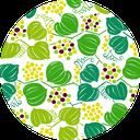 Pattern design Sankirai