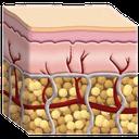 Clic para ver más sobre los tejidos.