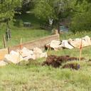 Baufolge ab Mai 2019 Trockenmauern