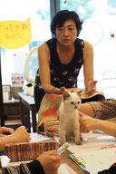 猫のためのTタッチセミナーの様子
